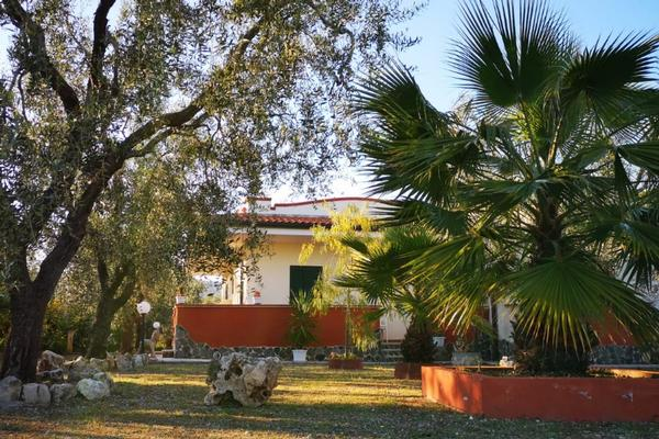 Bed and Breakfast Uliveto del Gargano