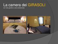 camera8185