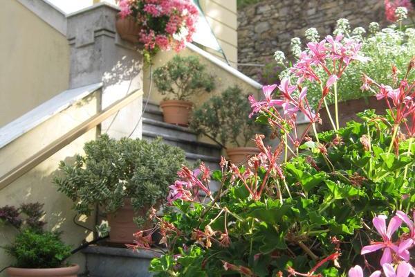 B&B Villa d'Albora