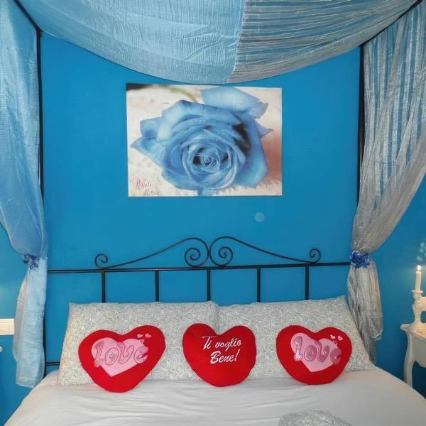 b&b petali rosa