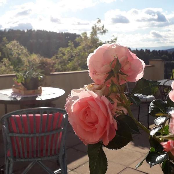 fiesole in giardino