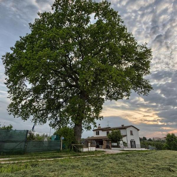 b&b country house la quercia