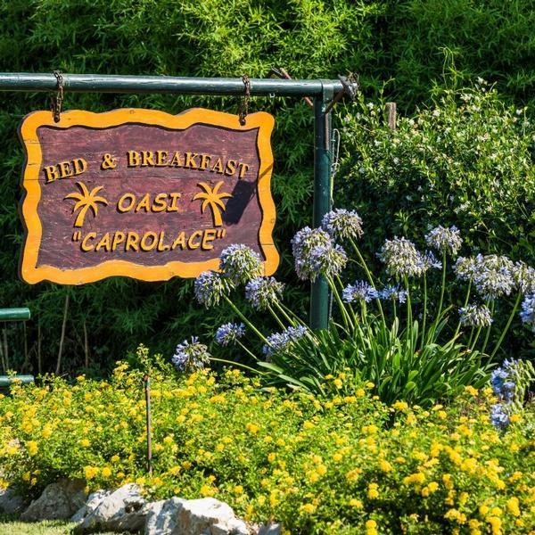 oasi caprolace