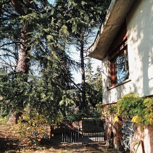 la casa degli scoiattoli