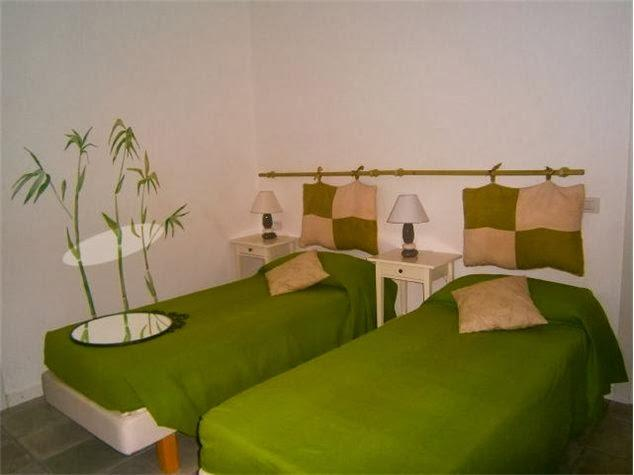 Camera verde 3