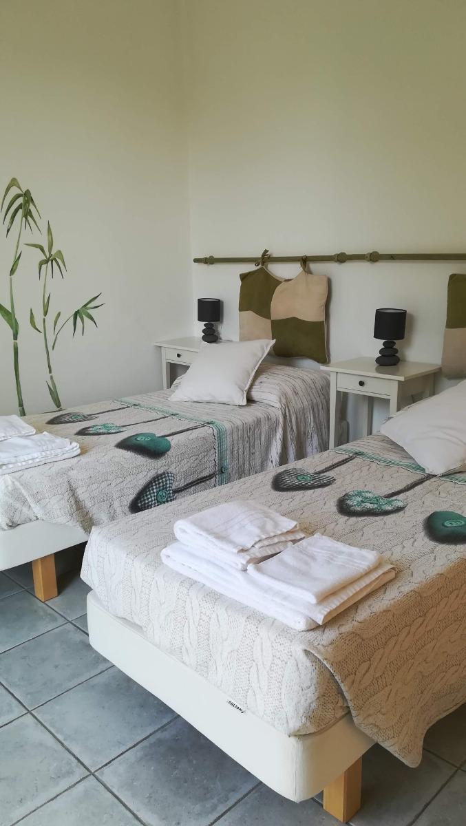 Camera verde 4