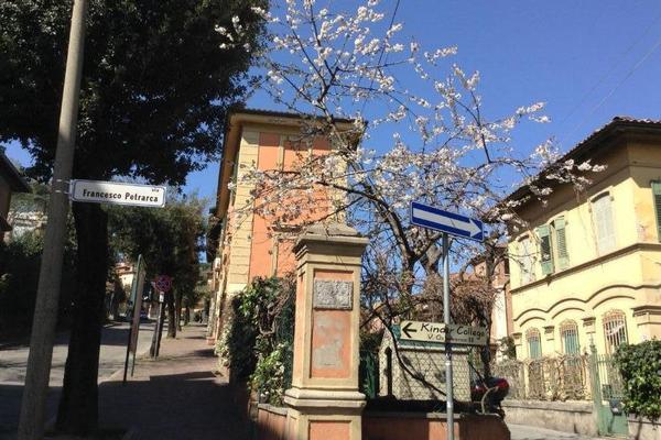 La Castagnina