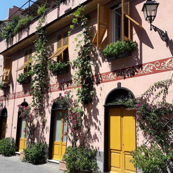 la casa delle viti