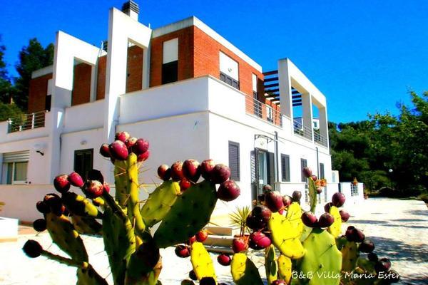 Villa Maria Ester