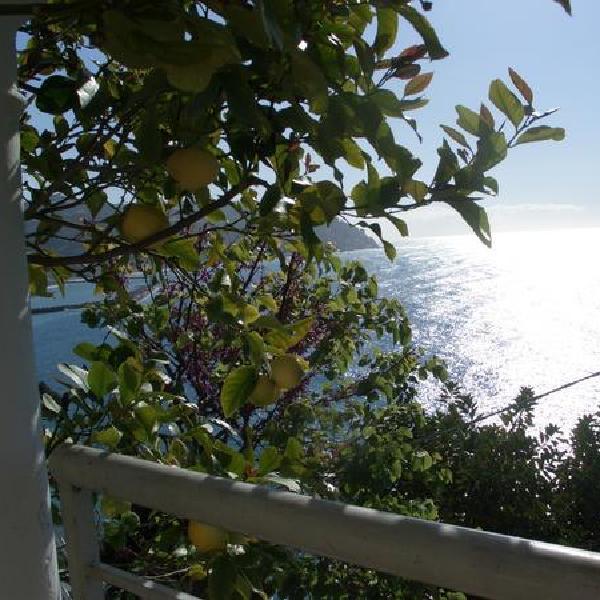 Isotta Garden