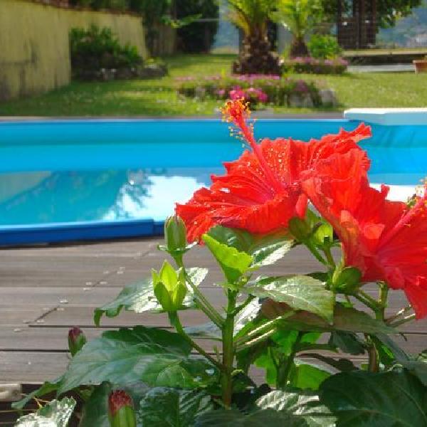 Casa Vacanza Lillo