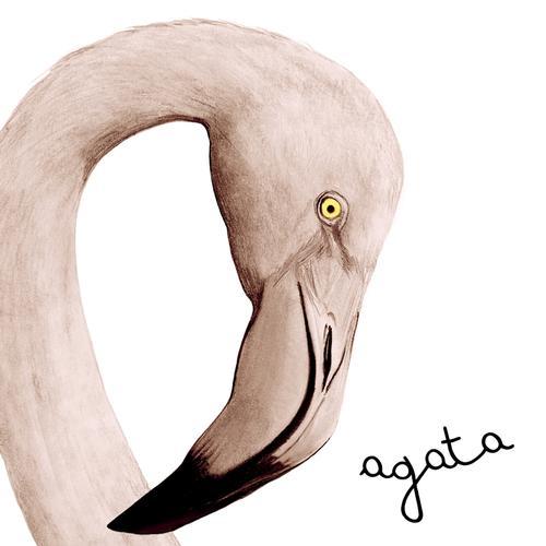 Il gestore di Agata Cruelty-free Room & Breakfast