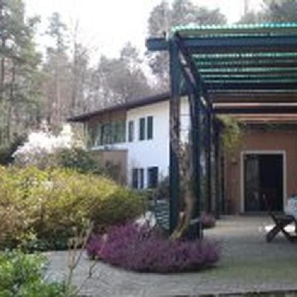 il giardino delle cince