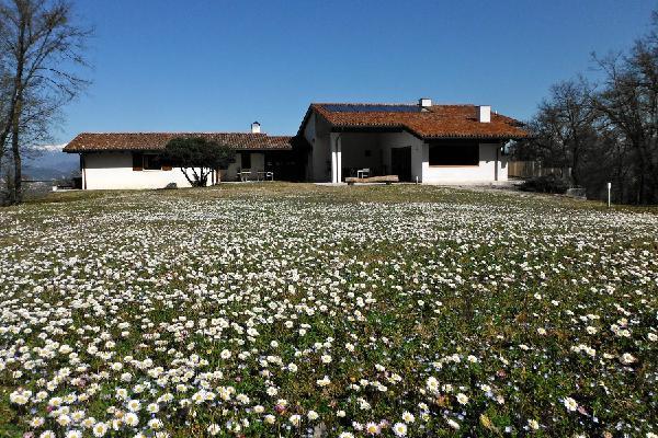 Al Montegallo