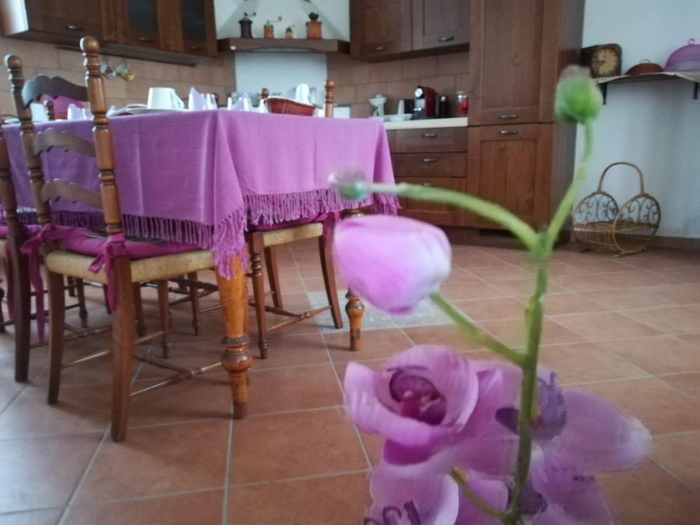 La colazione di AGRITURISMO CASCINA SALAZZARA