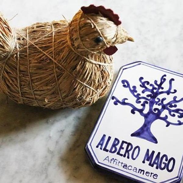 Albero Mago
