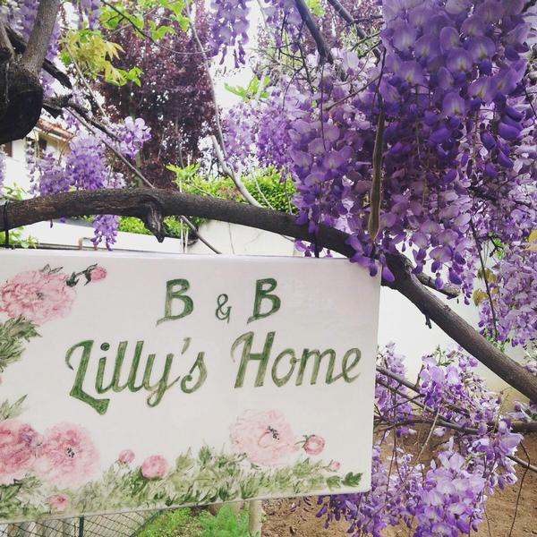 B&B Lilly's Home
