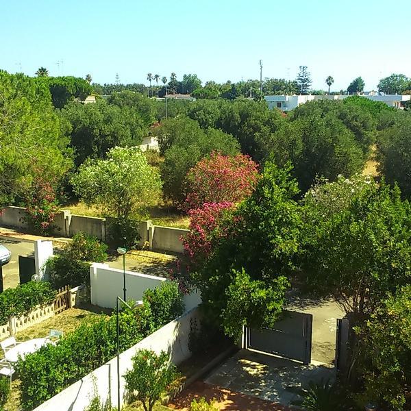 B&B Villa Lorenza
