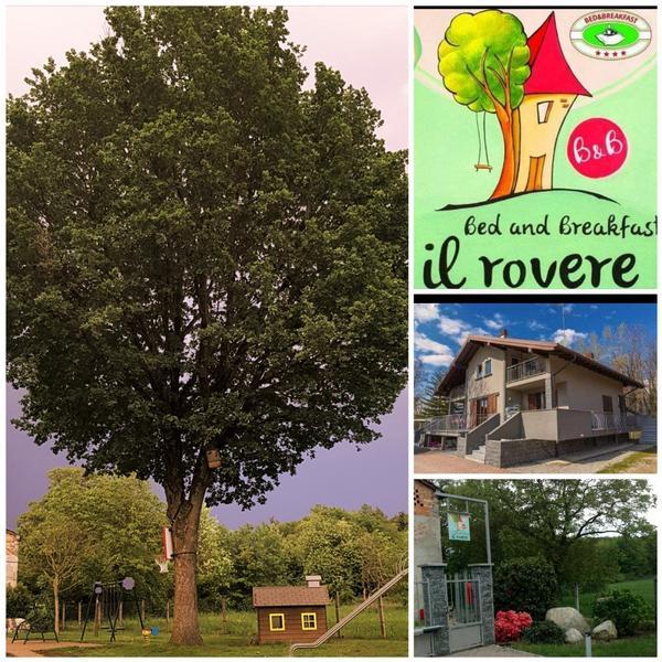 Il Rovere