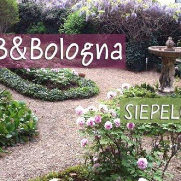 b&bologna