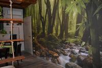 Camera con uso cucina