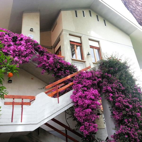 b&b villa fiorella