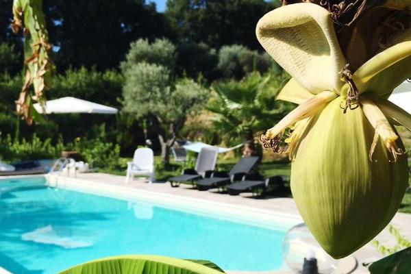 Bed and Breakfast Il Giardino Mediterraneo