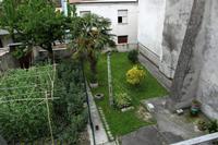 camera30554