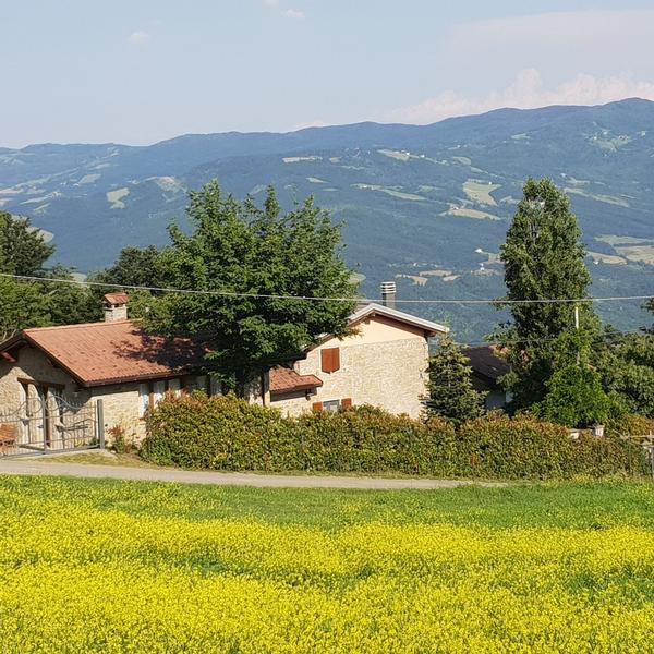 fattoria campo della teggia