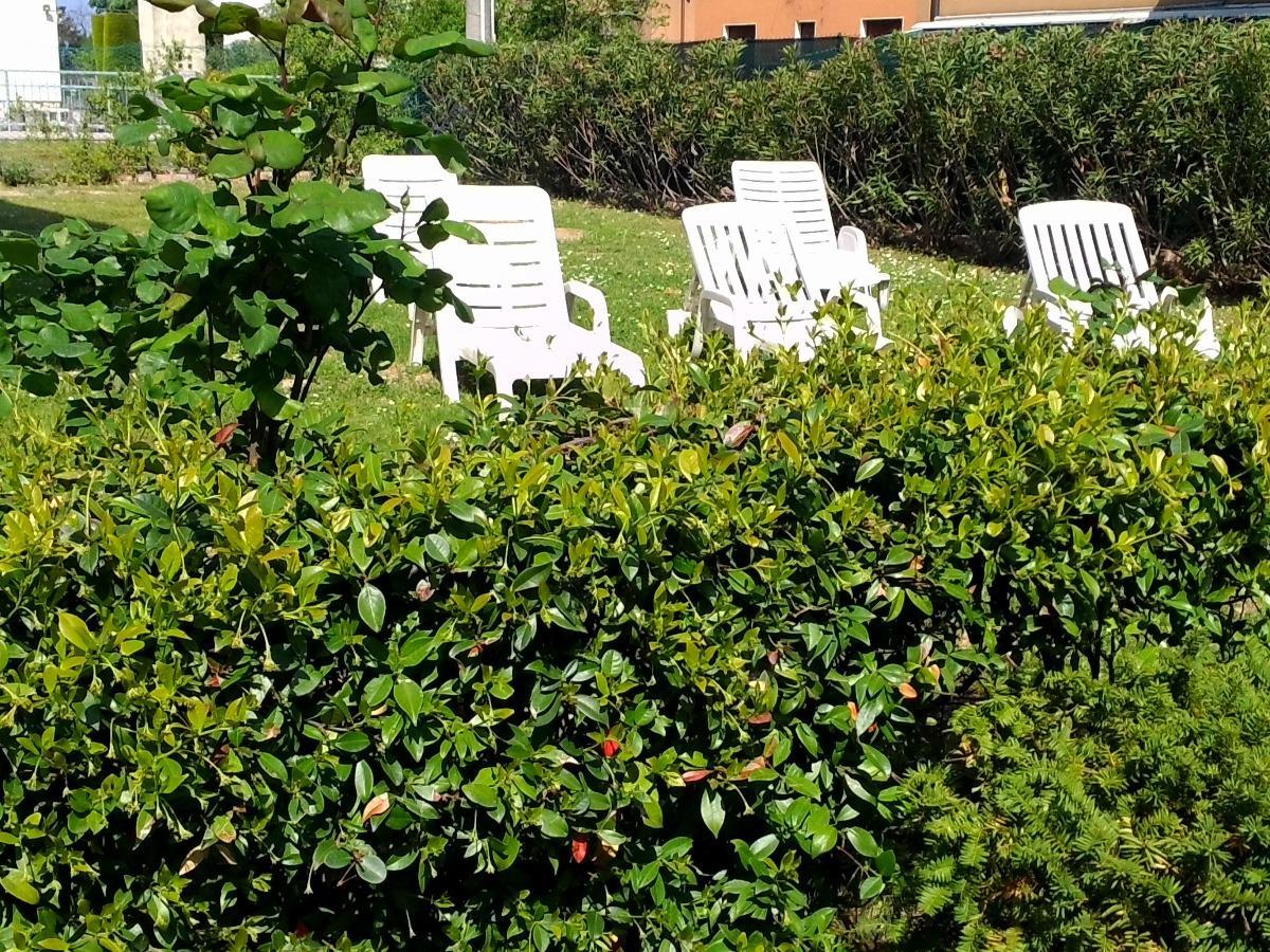 Trilocale con giardino 3