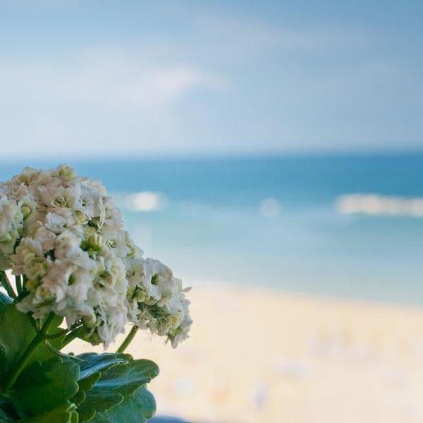 residence le terrazze sul mare