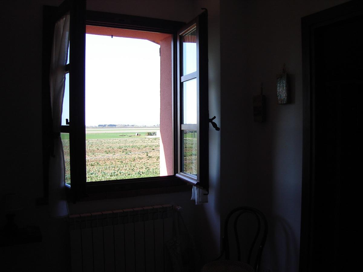 camera49832