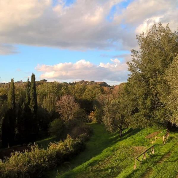 madonnella agricola