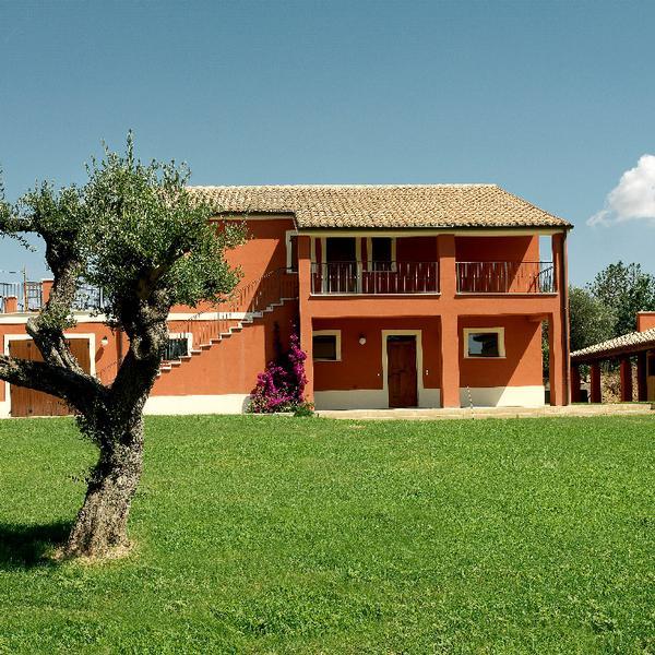 contado san lorenzo