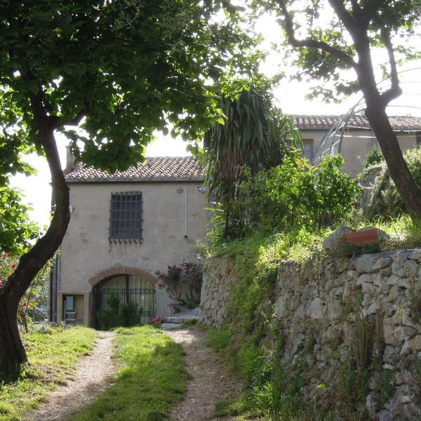 casa rustica fra gli ulivi