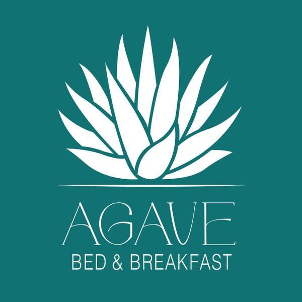 b&b agave