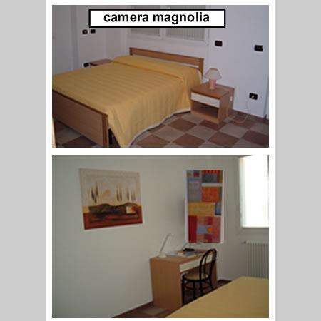 camera31528