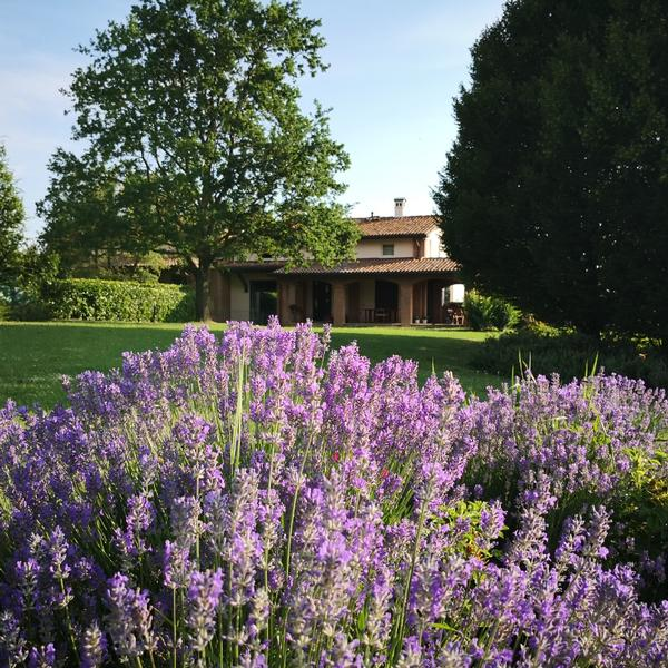 il giardino di tiz