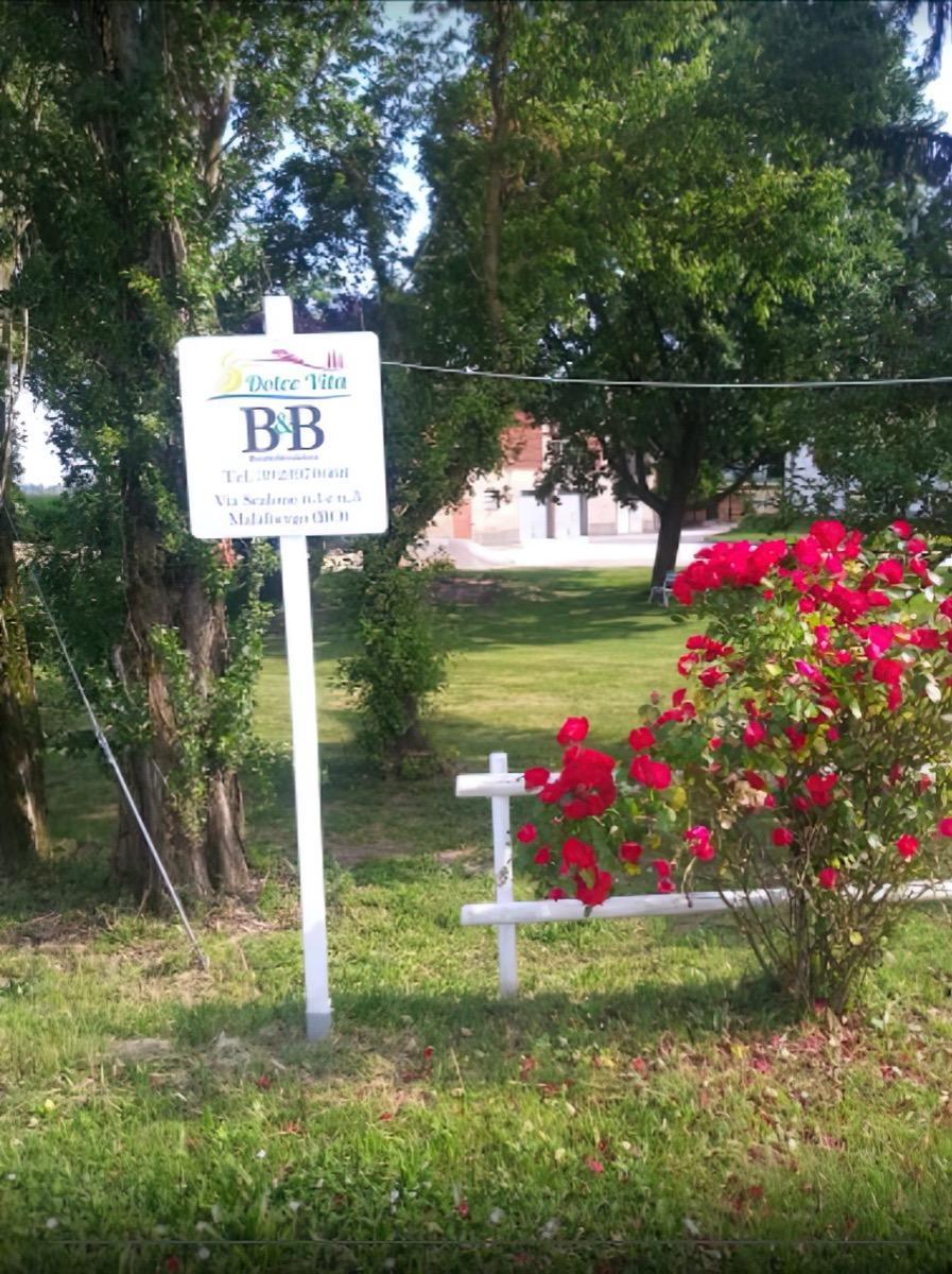 img-14