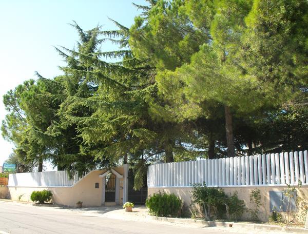 Villa Pini D Abruzzo Chieti