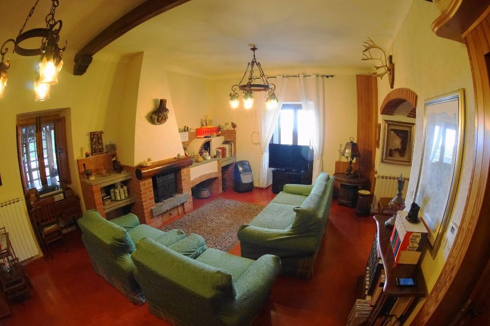 camera43124