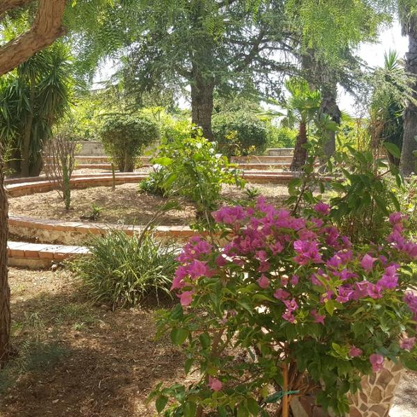villa alveria