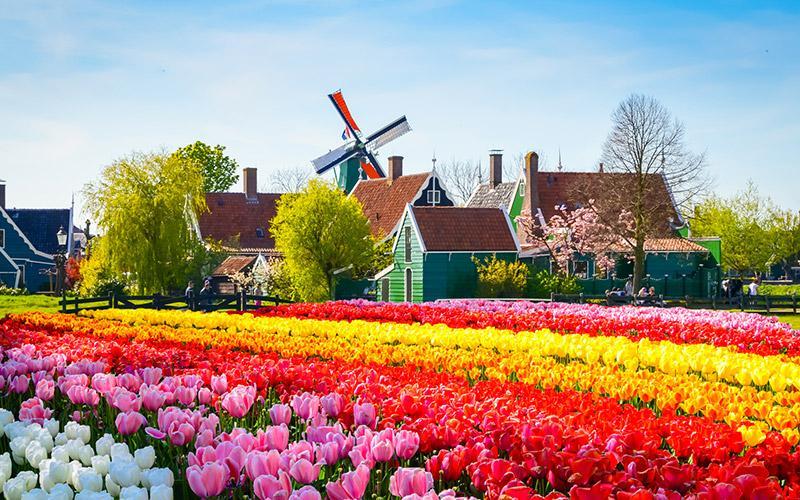 I B&B in Olanda - Foto 1