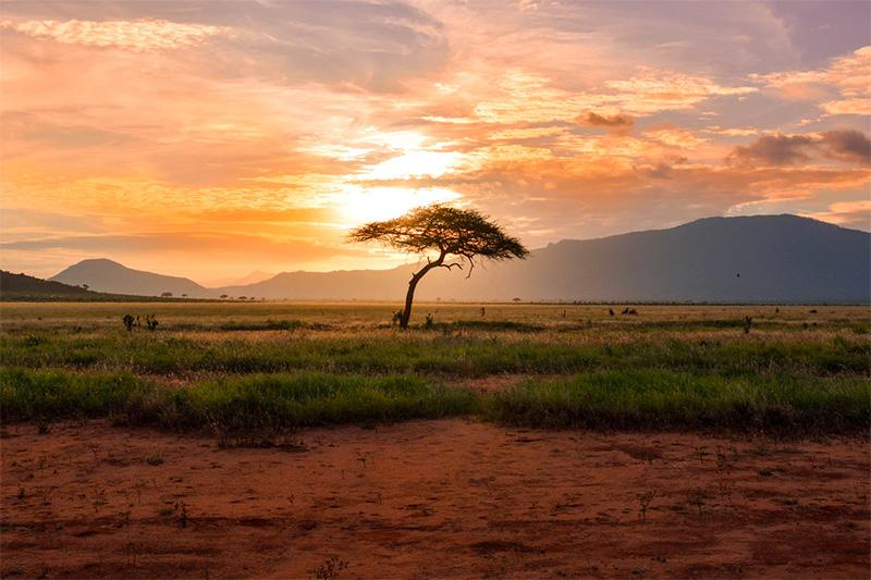 I B&B in Africa - Foto 1