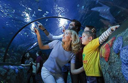 Turismo e divertimento: i parchi divertimento più avvincenti d'Italia