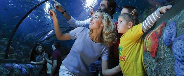 Capodanno al parco divertimenti: gli eventi più festosi per tutta la famiglia.